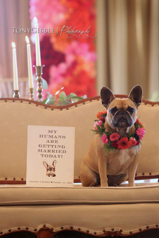 frenchie dog wedding signature wedding signs 2019 wedding